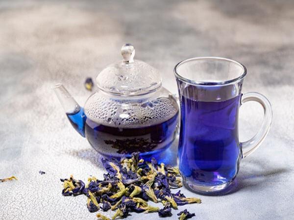 Cách pha trà hoa đậu biếc tím