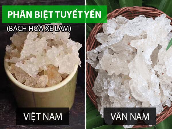 Tuyết yến mua ở đâu TPHCM